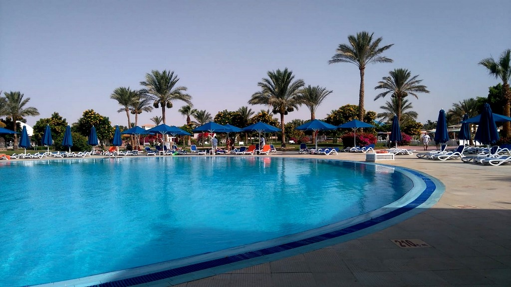 Zdjęcia: Hurghada, Muhafaza_Prowincja Morza Czerwonego, Przy basenie, EGIPT