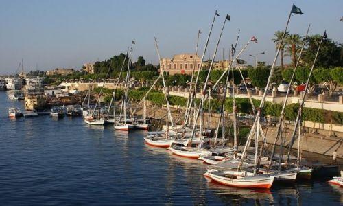 EGIPT / - / Luksor, port / Feluki