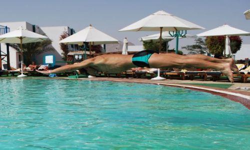 Zdjecie EGIPT / Sharm el sheikh / hotel Holiday / Wakacje w Egipcie