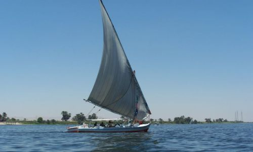 Zdjecie EGIPT / - / okolice kairu / nil