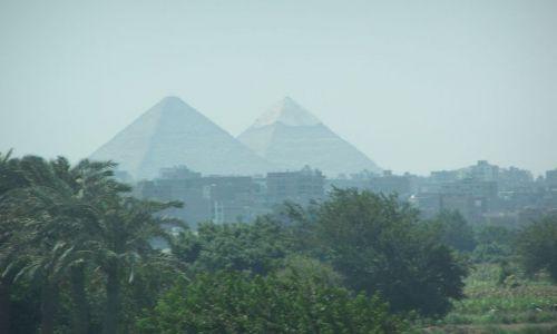Zdjecie EGIPT / - / kair / piramidy