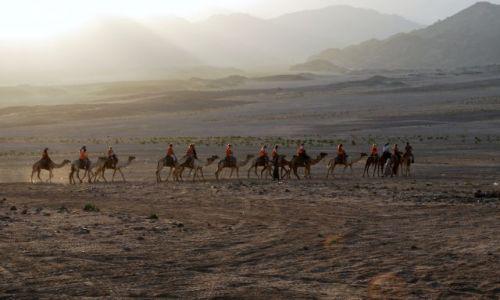 Zdjecie EGIPT / Synaj / Nieopodal Sharm el Shaikh / Karawana