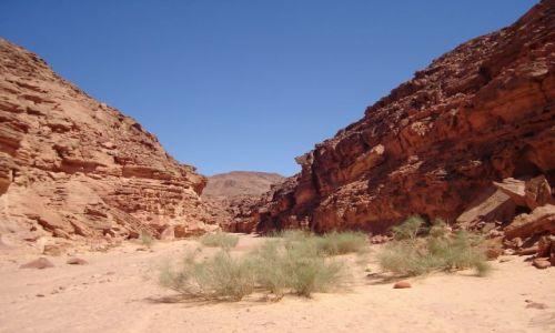 EGIPT / Półwysep Synaj / Pustynia w drodze do Klasztoru św. Katarzyny / Kolorowy kanion