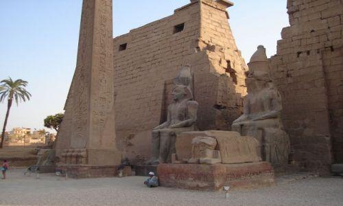 Zdjecie EGIPT / Środkowy Egipt / Luksor / Świątynia w Luksorze
