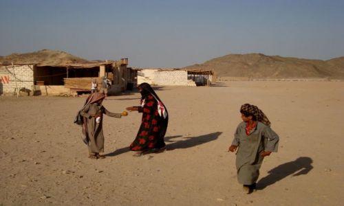 EGIPT / Sahara / obóz / cenny  owoc