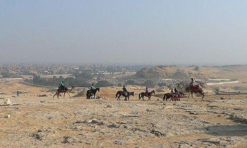 Zdjęcie EGIPT / Kair Giza / okolice piramid / Jeźdźcy