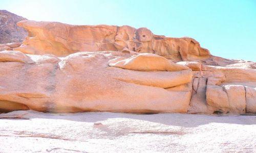 EGIPT / Synaj / okolice góry Synaj / Złota krowa