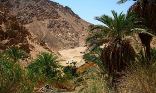 Zdjecie EGIPT / Dahab / pod górę / wWdrodze na szczyt