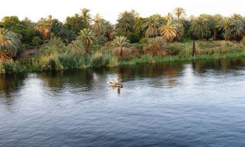 Zdjęcie EGIPT / Nil / Nil / z życia Nilu