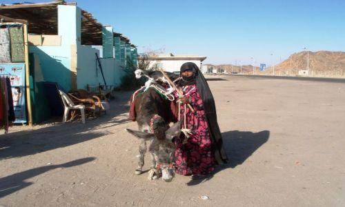 Zdjęcie EGIPT / Assuan / w drodze do Assuanu / Z życia wzięte...
