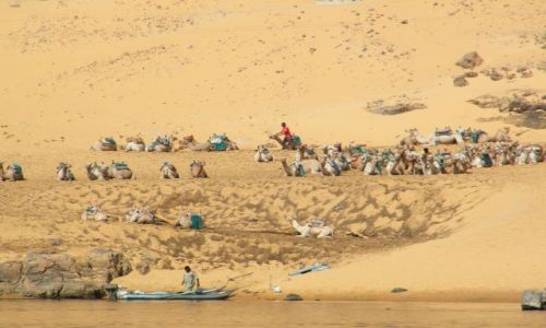 Zdjecie EGIPT / - / Nil / Wielkie Błądy
