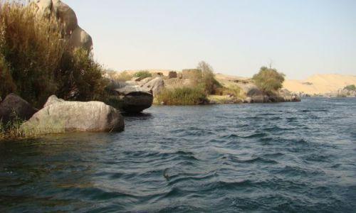 Zdjecie EGIPT / - / okolice Asuanu / Nil