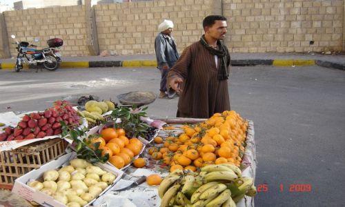 Zdjecie EGIPT / - / Hurghada / Pychotka