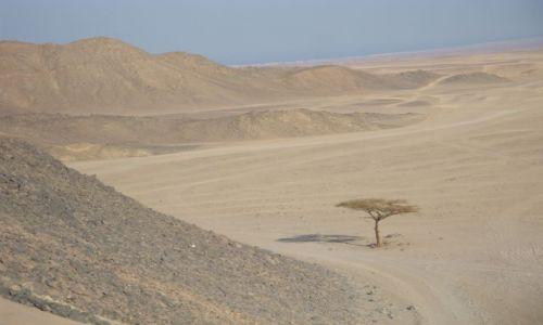 Zdjecie EGIPT / - / pustynia / Sahara