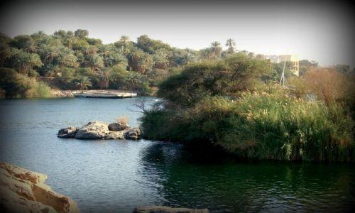 Zdjecie EGIPT / - / Luxor / Po Nilu 1
