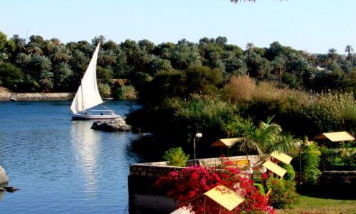 Zdjecie EGIPT / - / Luxor / Po Nilu 2