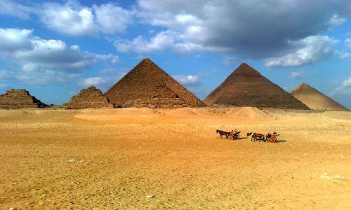 Zdjecie EGIPT / - / Giza / Jeden z siedmiu cudów  świata
