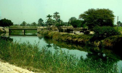 Zdjecie EGIPT / - / Luxor / Nad kanałem
