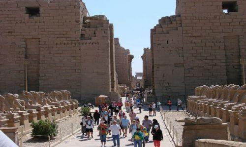 Zdjecie EGIPT / Luxor / Luxor / Muzeum w Luxorze