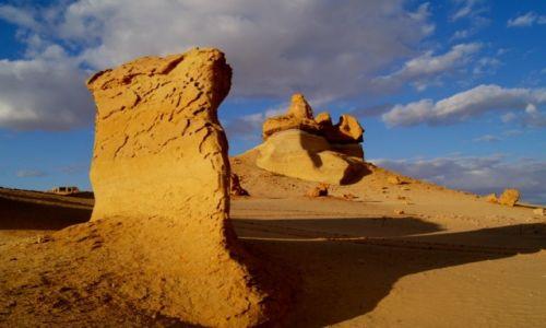 Zdjecie EGIPT / Sahara/Pustynia Zachodnia / Dolina Waleni- Wadi El Hitan / Konkurs