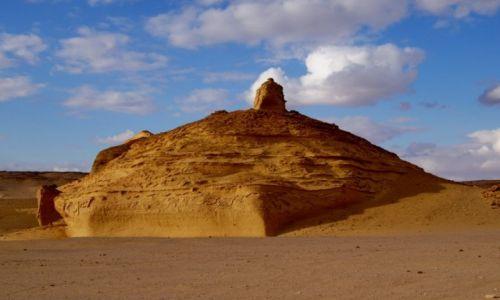 Zdjecie EGIPT / Pustynia Zachodnia / Dolina Waleni- Wadi El Hitan / Sahara