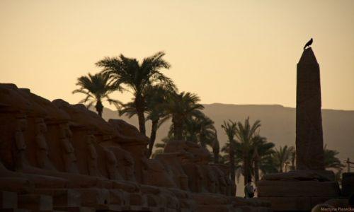 Zdjecie EGIPT / - / Karnak / Konkurs