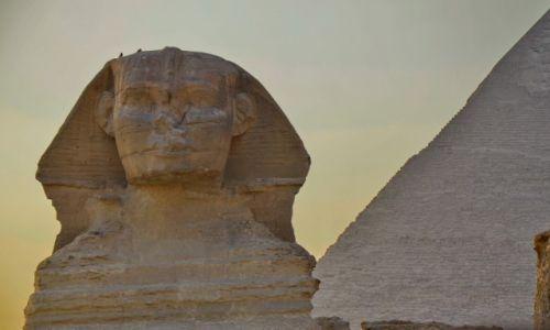 Zdjęcie EGIPT / Kair / Giza / Sphinx