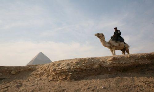 Zdjecie EGIPT / Aglomeracja Kairu / Giza / Strażnik piramid