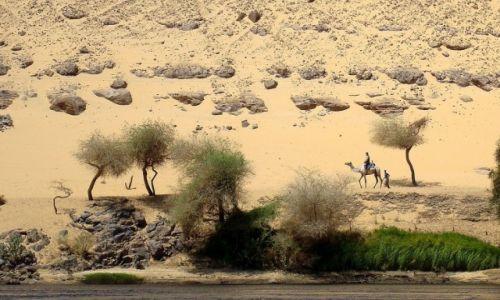 Zdjęcie EGIPT / Asuan / I katarakta na Nilu / Miejscowi