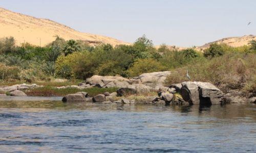 Zdjęcie EGIPT / Assuan / Park krajobrazowy I katarakty / Piasek, zieleń i błękit