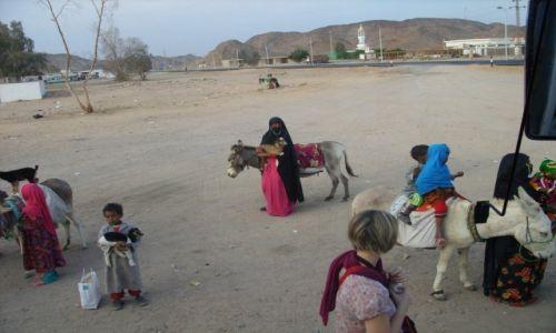 EGIPT / Luxor / pustynia / Samo życie