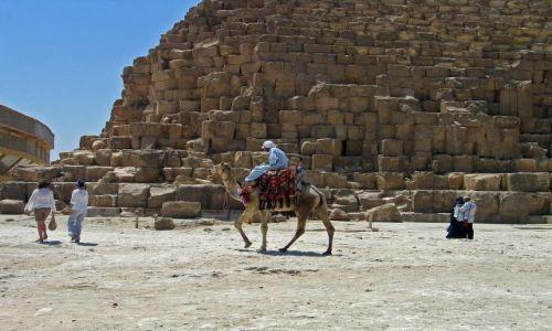 Zdjecie EGIPT / brak / Kair -Gizy / Turystyczne jazdy
