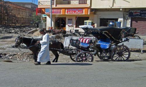 Zdjecie EGIPT / brak /  Luksor / -Środek transportu