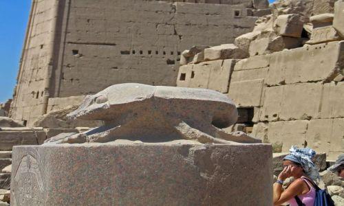Zdjecie EGIPT / brak /  Karnak okolice Luksoru / Skarabeusz szczęścia