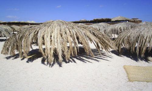 Zdjecie EGIPT / Hurgada / Wyspa Giftun / Palmowa knajpa