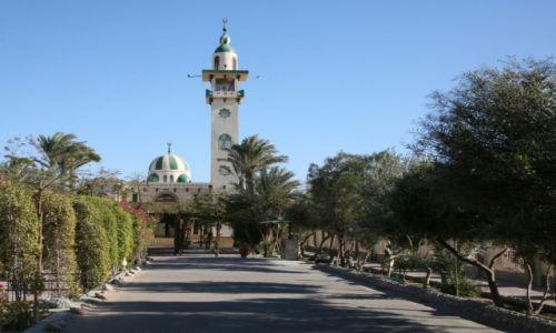 Zdjęcie EGIPT / Egipt wschodni / Hurghada, meczet / Ogrody