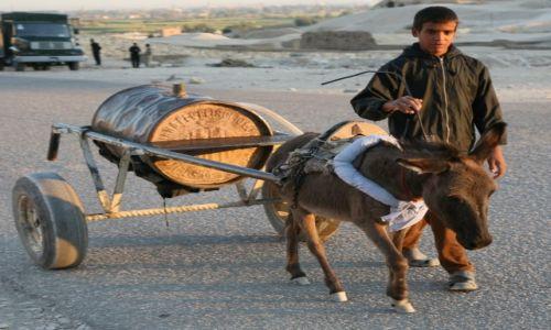 Zdjęcie EGIPT / Górny Egipt / Luksor / Woziwoda