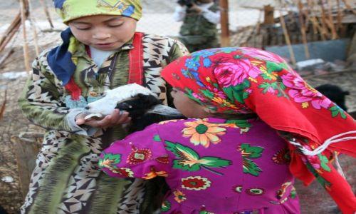 Zdjęcie EGIPT / Egipt wschodni / Hurghada / Małe beduinki