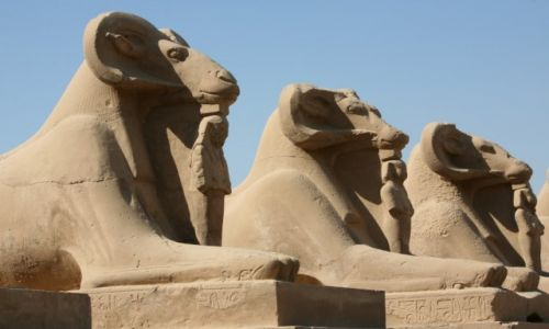 Zdjęcie EGIPT / Górny Egipt / Karnak, świątynia Amona-Re / Sfinksy