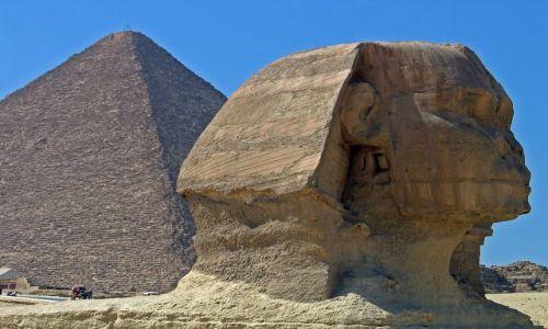 Zdjecie EGIPT / brak / Kair-Gizy / Oblicze Sfinksa