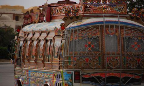 Zdjecie EGIPT / - / El Gouna / Bus driver.