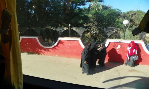 Zdjęcie EGIPT / - / Luxor / wykluczona ?
