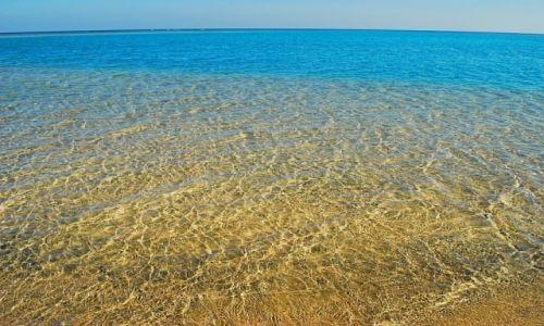 Zdjęcie EGIPT / marsa el alam / marsa el alam / idealnie czysto