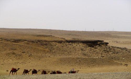 Zdjęcie EGIPT / -- / Giza / Pustynia..