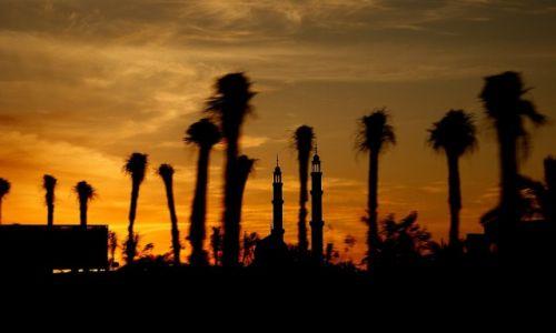 Zdjęcie EGIPT / Synaj / Sharm el Sheikh / Meczet