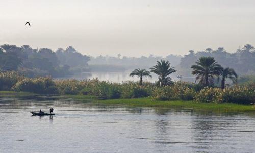 Zdjecie EGIPT / Środkowy Egipt / Nad Nilem / Świt