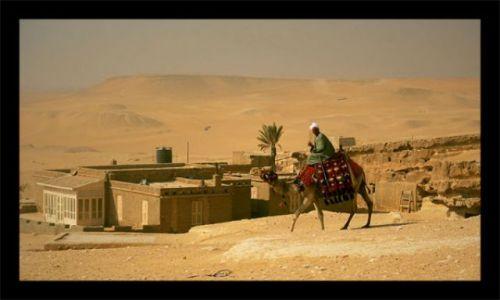 Zdjecie EGIPT / Giza / Giza / Giza