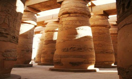 Zdjecie EGIPT / Górny Egipt / Karnak, świątynia Amona-Re / Kolumny Wielkiej Sali Hypostylowej