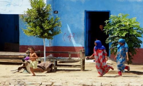 Zdjęcie EGIPT / Egipt południowy / dolina Nilu / Charleston?