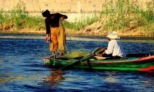 EGIPT / - / Asuan / połów ryb